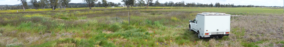 Contaminated land remediation by Codyhart Environmental Gold Coast, NSW, QLD